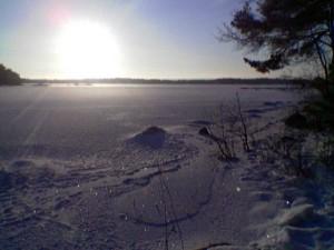 Havsvidder täckta av is